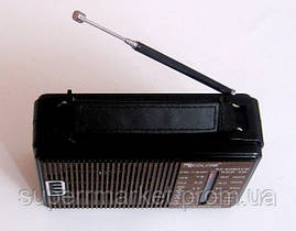 Портативное радио GOLON RX-608ACW, фото 2