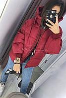 Курточка с капюшоном (цвет- красный, ткань - синтепон 200) Размеры S,М,L (розница и опт)