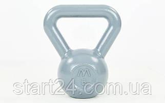 Гиря чугунная окрашенная серая UR TA-0182-8 8кг (чугун, серый)