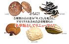 Seedcoms Сила грибів, 90 капсул на 90 днів, фото 4