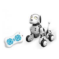 Робот-собака 9007A Black/White