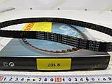 Ремень ГРМ Заз 1102,1103 Таврия,Славута,Сенс,Sens Bosch (оригинал),1987949107, фото 3