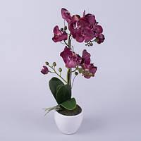 Орхидея латексная в кашпо двойная бургунди  Цветы искусственные
