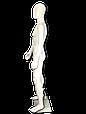 Манекен белый  мужской, фото 2