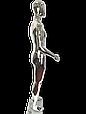 Манекен серебряный  мужской, фото 3