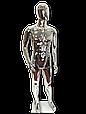 Манекен серебряный  мужской, фото 5