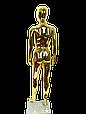 Манекен женский золото, фото 3
