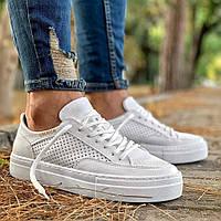 Чоловічі кросівки Chekich CH015 White, фото 1