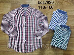 Сорочки для хлопчиків, Glo-Story , 110 рр., фото 2