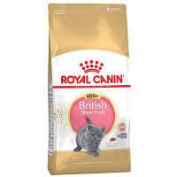 Royal Canin Kitten British Shorthair 10 кг - Корм для Британцев короткошерстных котят от 4 мес