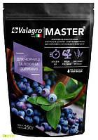 Мастер комплексное минеральное удобрение для черники и голубики высокорослой, 250 г