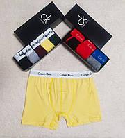 Набор мужских трусов Calvin Klein 5 шт без коробки