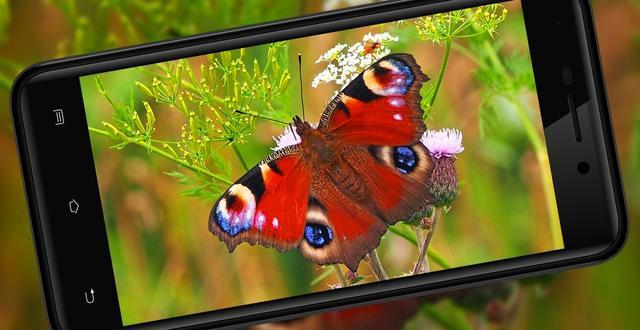 Смартфон Nomi I5014 EVO M4