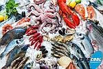Холодильное оборудование для камер хранения морепродуктов