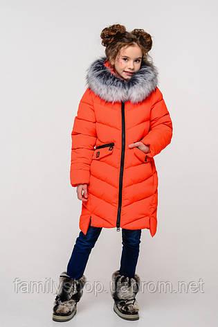 Детское зимнее пальто  на девочку Афина  нью вери (Nui Very), фото 2