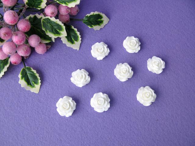 belaja rosa akril