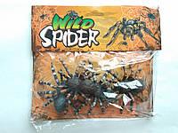 Павуки до декору