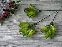 Веточка хмеля салатового - 12 грн (5 веточек 4 см на стебле)