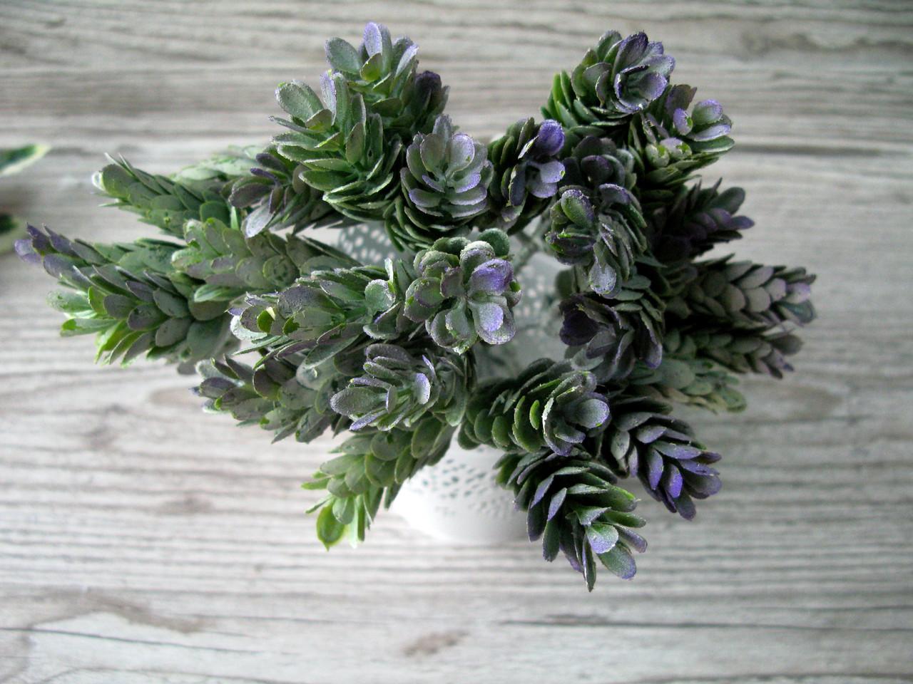 Веточка хмеля фиолетового - 12 грн (4 веточки 4 см на стебле)