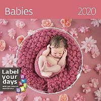 Календарь настенный HELMA 2020 30x30 см Babies (LP15-20)