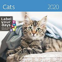 Календарь настенный HELMA 2020 30x30 см Cats (LP01-20)
