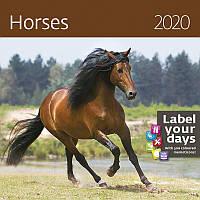 Календарь настенный HELMA 2020 30x30 см Horses (LP04-20)