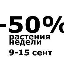 Акция до -50%