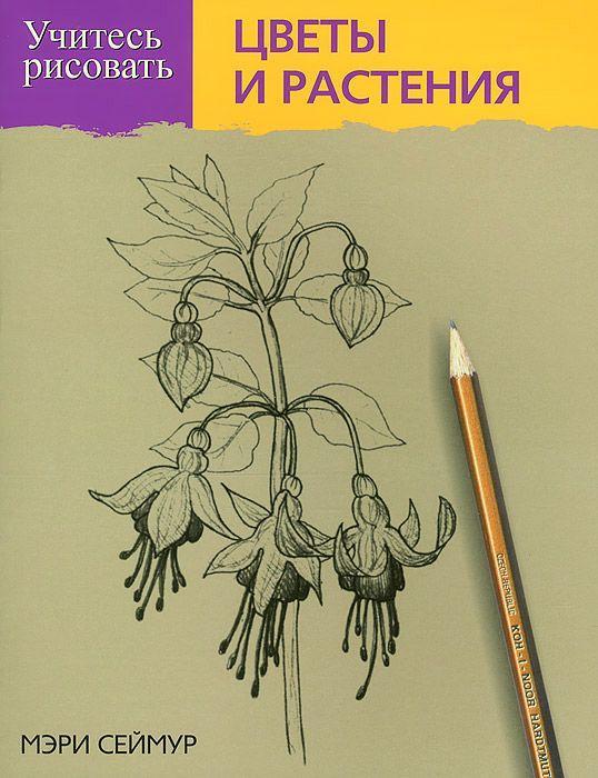 Учитесь рисовать цветы и растения. Мэри Сеймур