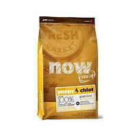 Беззерновой корм NOW Fresh Puppy Recipe Grain Free для щенков, с индейкой, уткой и лососем, 2.72 кг
