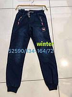Брюки под джинс утепленные для мальчиков Seagull оптом, 134-164 рр