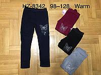 Лосины утепленные для девочек оптом, Glass Bear, 98-128 см,  № HZ-8342, фото 1