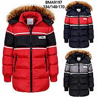 Зимняя куртка для мальчиков Glo-Story 134/140-170 р.р., фото 1