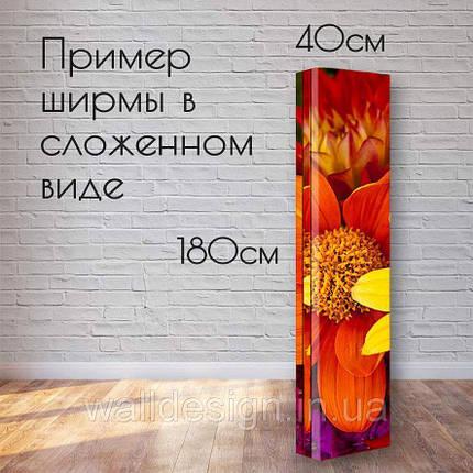 """Ширма """"Нежные листья"""", фото 2"""