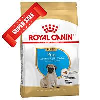 Сухой корм для собак Royal Canin Pug Puppy 500 г