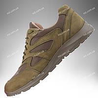 Тактические кроссовки демисезонные / армейская военная обувь SICARIO (оливковый)