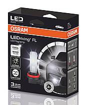 H8/H11/H16 OSRAM FOG LAMP светодиодные лампы H8/H11/H16 в ПТФ  OSRAM LEDriving Retrofit FOG LAMP H10 67219CW, фото 3