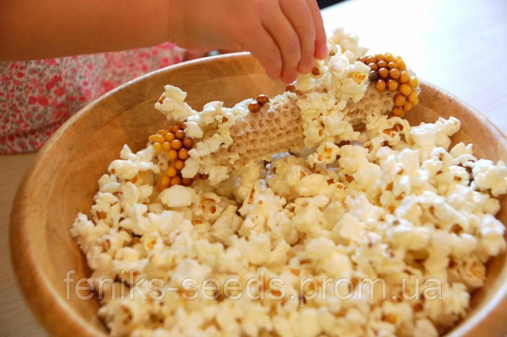 Кукуруза Попкорн золотая семена