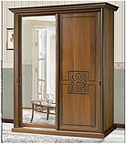 """Спальня """"С-3"""" Шкаф-купе двухдверный 2,1 (Скай), фото 3"""