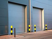 Ворота промышленные секционные Alutech ProPlus