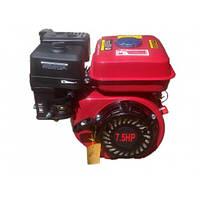 Бензиновый двигатель 170F в сборе (шпонка 20мм) 7.5 л.с