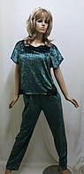 Костюм велюровый брюки и футболка 294, фото 1