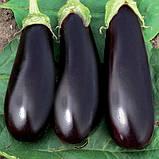 Эпик F1 семена баклажан 1000 шт Seminis Голландия, фото 3