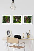 Творчий набір 3 картини 300*300 мм, фото 5