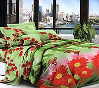Комплект постельного белья №пл347 Двойной