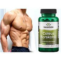 Форсколин - повышает свободный тестостерон, растительный анаболик + программа тренировок
