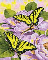 Картина по номерам Нежные бабочки (BK-GX30463) 40 х 50 см Brushme [Без коробки]