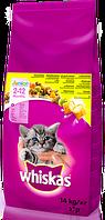 Віскас WHISKAS Смачні подушечки з курятиною для кошенят,14 кг