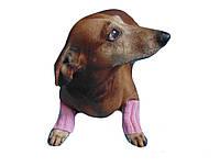 Леггинсы для маленькой собаки,теплые лапы собаки