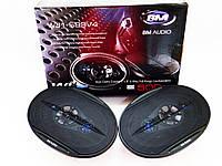 Динамики Boschmann BM Audio WJ1-S99V4 (500W) 6x9 овалы