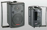 Активная акустическая система SPK8A